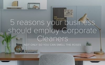 5 reasons your business should employ cleaners
